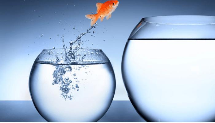 Lo stato desiderato nuotare verso una situazione migliorativa