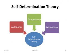 Teoria dell autodeterminazione o Self Determination Theory